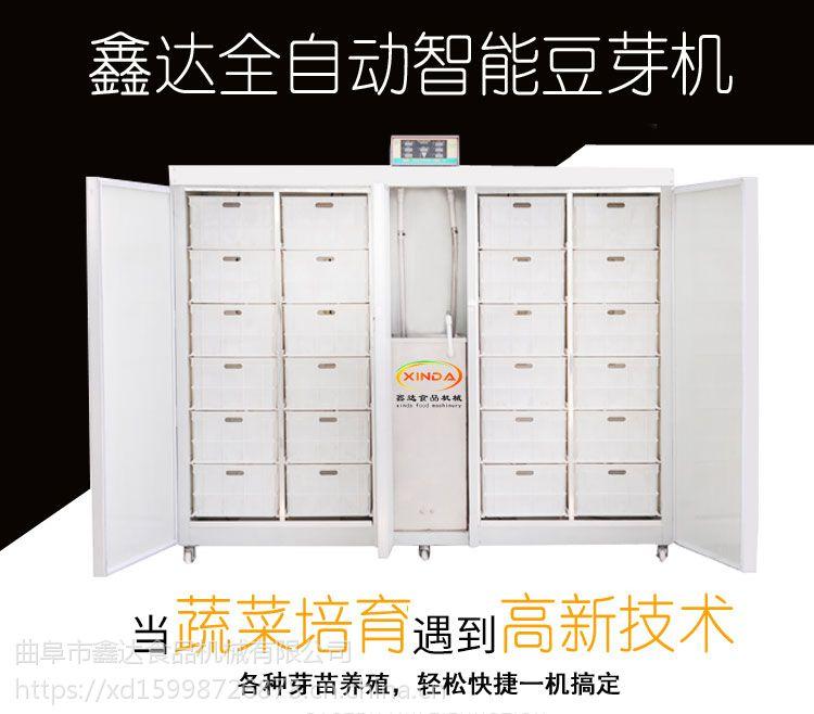 电脑控制数字化豆 芽机 重庆发豆芽机机器 鑫达豆芽机生产厂家