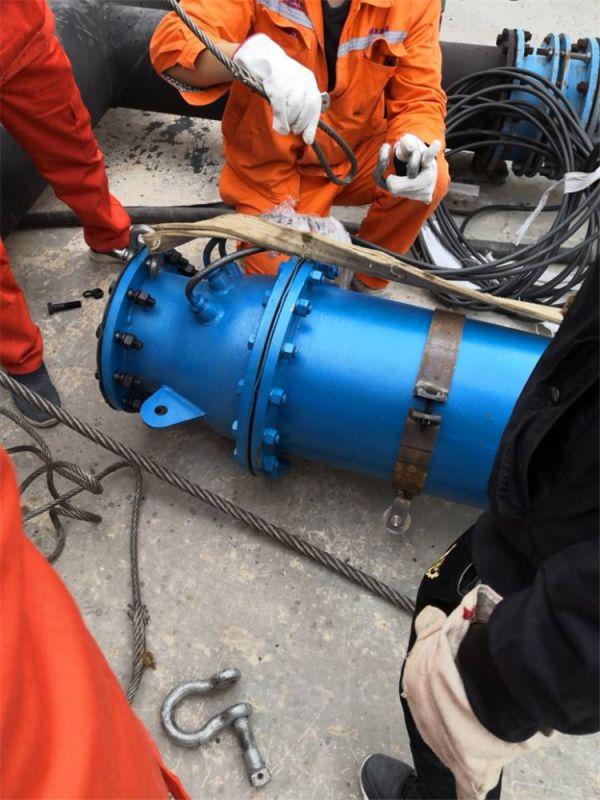 卧用潜水泵,大流量潜水泵,河道取水高扬程潜水泵