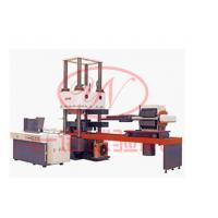 微机控制减震器压剪试验机生产厂家YAW