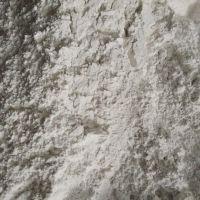 供应贝壳沙 天然贝壳粉 煅烧贝壳粉