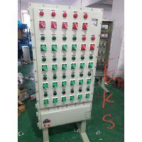 厂家定做防爆PLC控制柜 BQP51-11KW防爆变频器控制箱