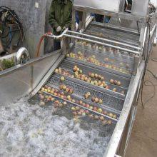 叶菜清洗机 清洗风干流水线 康汇机械