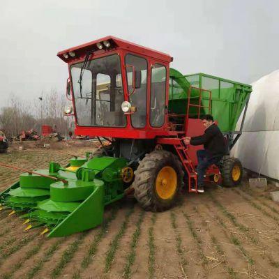 青储机厂家直销牧草收割粉碎机 玉米秸秆切碎铡草机 青饲料揉丝机